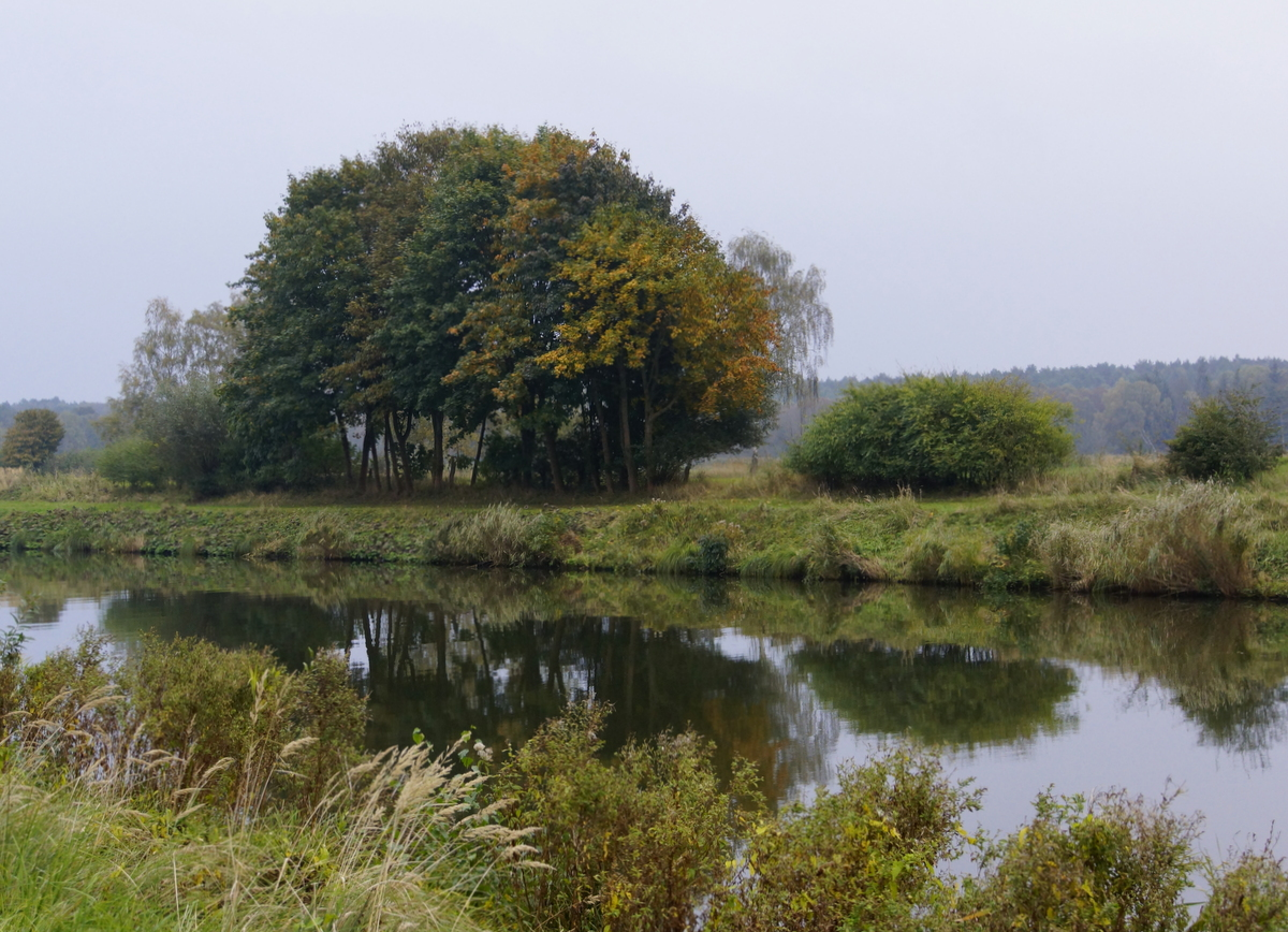 Güster am Elbe-Lübeck-Kanal
