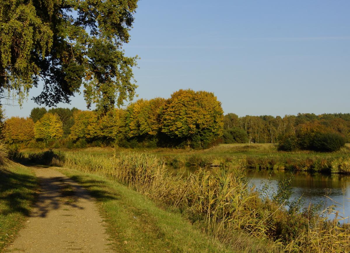 Saisonausklang am Prüßsee in Güster
