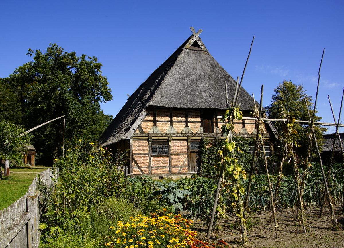 Auf Lüneburger Heide