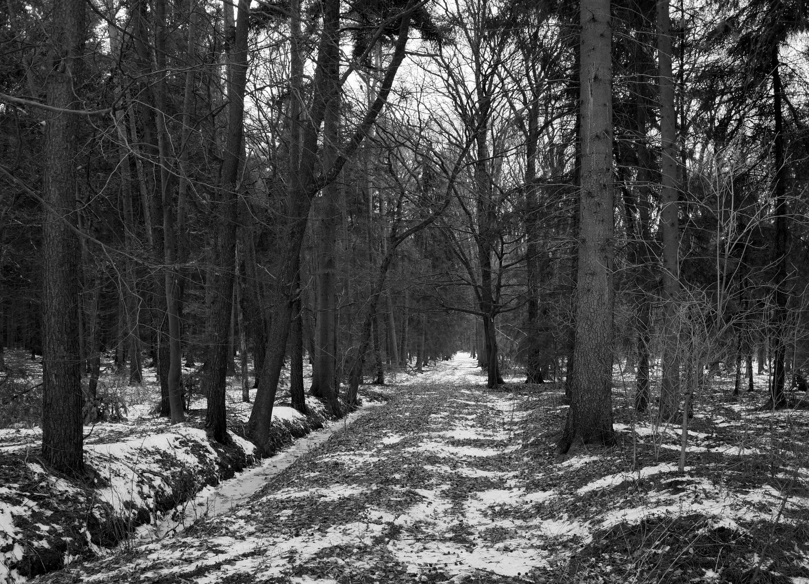 Mit Magellan durch Feld und Wald